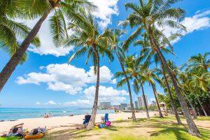 ハワイで不倫旅行の調査
