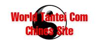 ワールド探偵COM(中国語サイト)